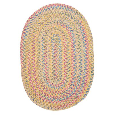 Oliver Braided Area Rug Rug Size: Oval 5 x 8