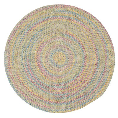 Oliver Braided Reversible Area Rug Rug Size: Oval 2 x 3