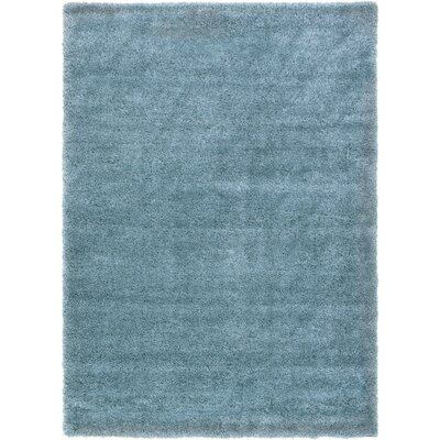 Evelyn Light Blue Area Rug Rug Size: 7 x 10