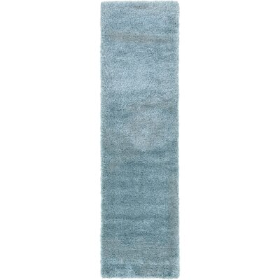 Evelyn Light Blue Area Rug Rug Size: Runner 27 x 10