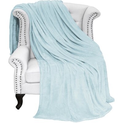 Karlie Ultra Soft Microplush Blanket Color: Light Blue, Size: King