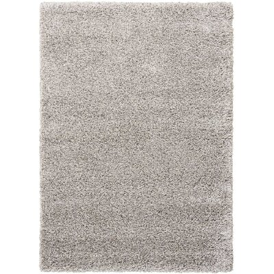Shelley Light Gray Area Rug Rug Size: Rectangle 311 x 511