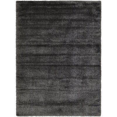 Evelyn Black Area Rug Rug Size: Rectangle 7 x 10