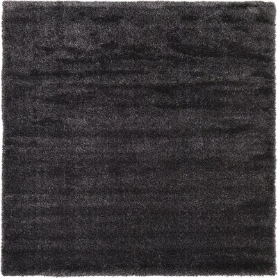 Evelyn Black Area Rug Rug Size: Square 8