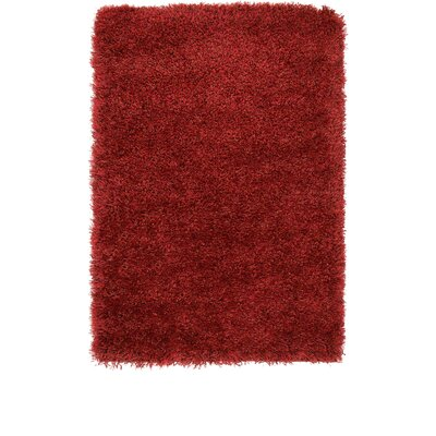 Evelyn Red Area Rug Rug Size: Rectangle 22 x 3