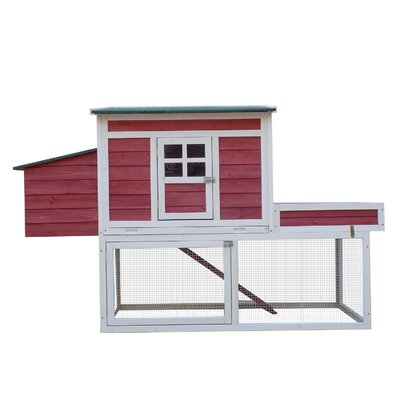 Hagerty Chicken Coop with Display Top, Run Area and Nesting Box