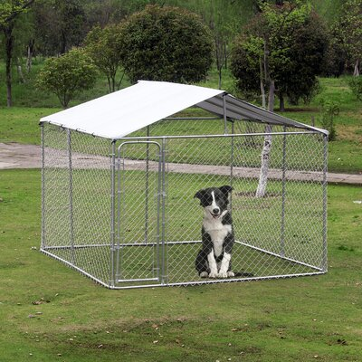 Large Outdoor Dog Steel Yard Kennel