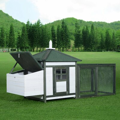 Chicken Coop with Run Color: Green/White