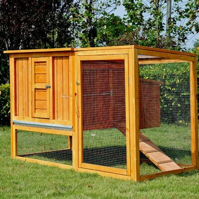 Chicken Coop with Nesting Box and Outdoor Run