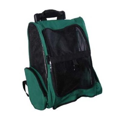 Deluxe Travel Pet Carrier Color: Green