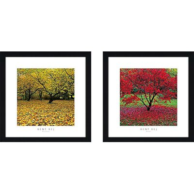 'Acer' 2 Piece Framed Photographic Print Set on Canvas