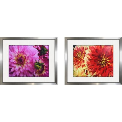 'Pink Dahlia II' 2 Piece Framed Photographic Print Set
