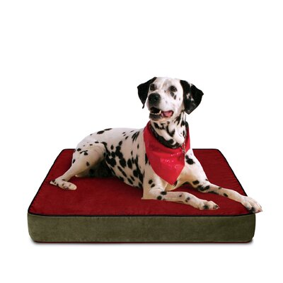 Mona Dog Bed with Lux Cover Size: Large (33 L x 23 W)