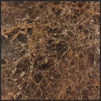 Dark Emperador 12 x 12 Marble Field Tile in Gray