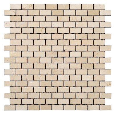 5/8 x 1 1/4 Square Mosaic Polished in Crema Marfil