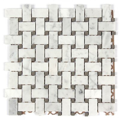 Bianco Carrara Basket Weave Mosaic Polished Tile in Gray Dot