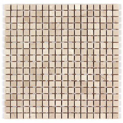 5/8 x 5/8 Square Mosaic Polished in Crema Marfil