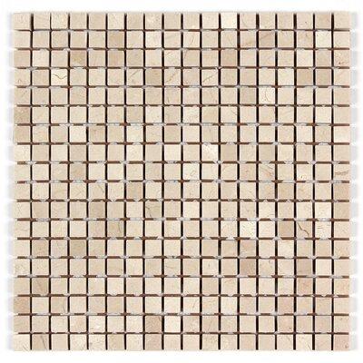 5/8 x 5/8 Square Mosaic Polished in Crema Marfil