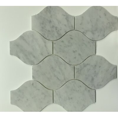 Bianco Carrara 11.4 x 13.1 Marble Mosaic Tile in Lanterna Polished