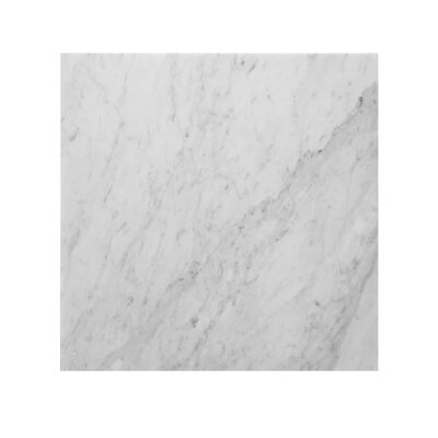 Bianco Carrara 18 x 18 Marble Field Tile in Gray