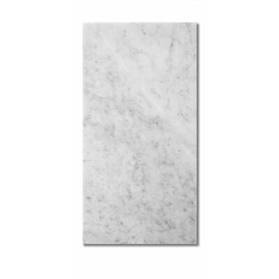 Bianco Carrara 12 x 24 Marble Field Tile in Gray