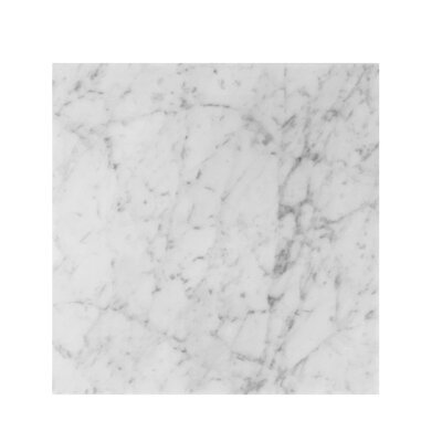 Bianco Carrara 12 x 12 Marble Field Tile in Gray