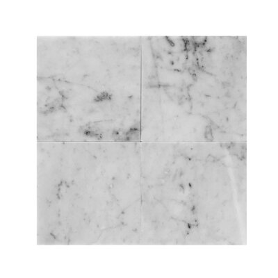 Bianco Carrara 6 x 6 Marble Field Tile in Gray