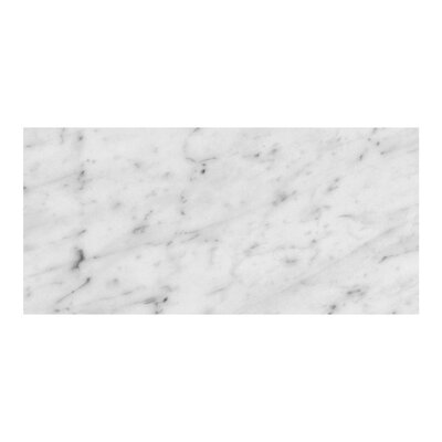 Bianco Carrara 6 x 12 Marble Field Tile in Gray