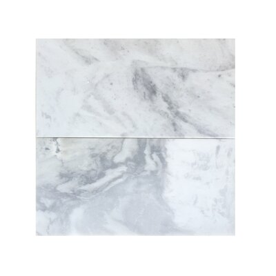 6 x 12 Marble Field Tile in Blue Argentino
