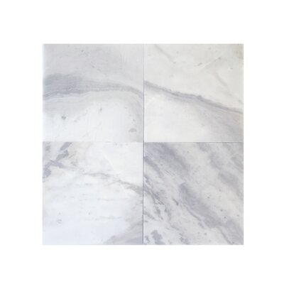 6 x 6 Marble Tile Polished in Blue Argentino