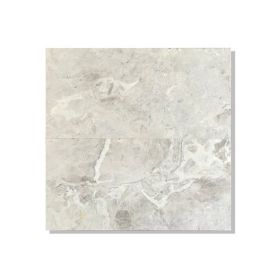 Silver Galaxy 6 x 12 Marble Field Tile in Gray