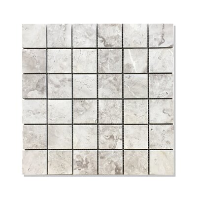 Silver Galaxy 2 x 2 Square Mosaic Polished