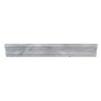 2 x 12 Marble Crown Molding Polished in Blue Argentino