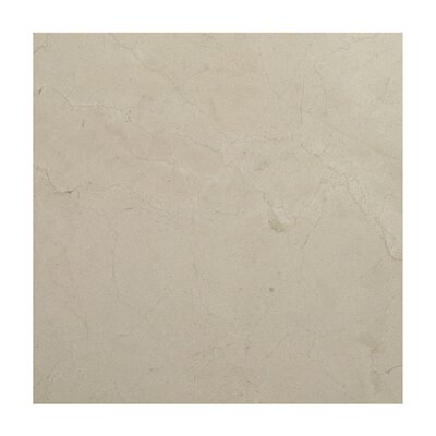 Crema Marfil 12 x 12 Marble Field Tile in Gray