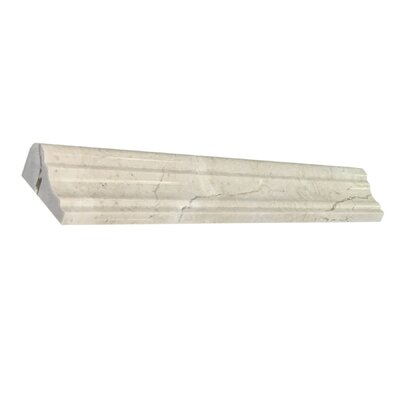 Diana Royal 12 x 2 Marble Bullnose Tile Trim in Beige