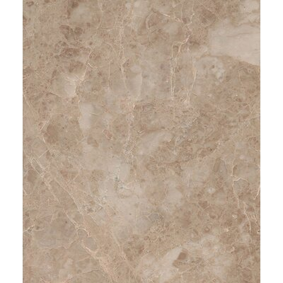 Cappuccino 12 x 12 Marble Field Tile in Beige