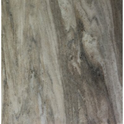 Palissandro 12 x 12 Marble Field Tile in Gray
