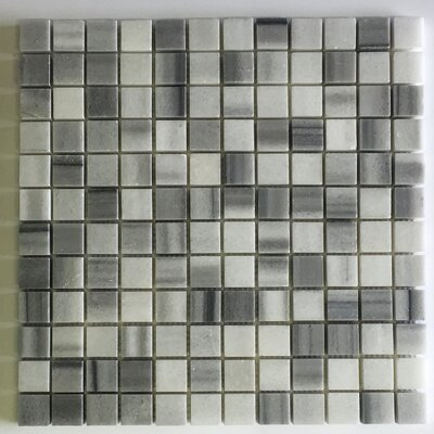 Equator Square 1 x 1 Marble Mosaic Tile in Gray