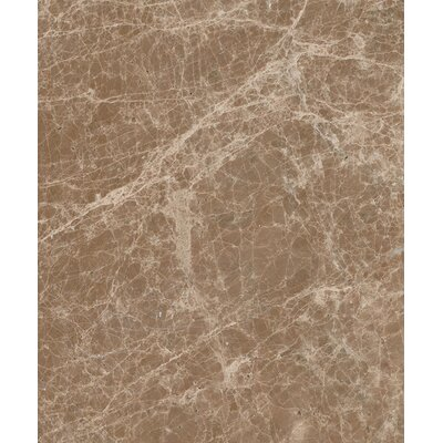 Emperador Light 12 x 24 Marble Field Tile in Beige