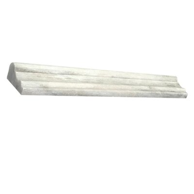 Palissandro 25 x 12 Marble Counter Rail Tile Trim in White