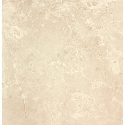 Botticino 12 x 12 Marble Field Tile In Beige