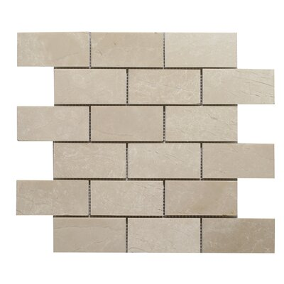 Botticino Brick 2 x 4 Mosaic Tile In Brown