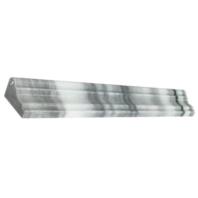 Equator 12 x 2 Marble Counter Rail Tile Trim in Gray