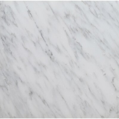 6 x 6 Arabescato Marble Tile in Polished White