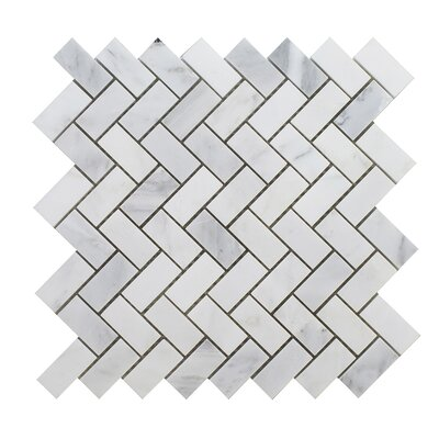Arabescato 12 x 12 Natural Stone Mosaic Tile in White