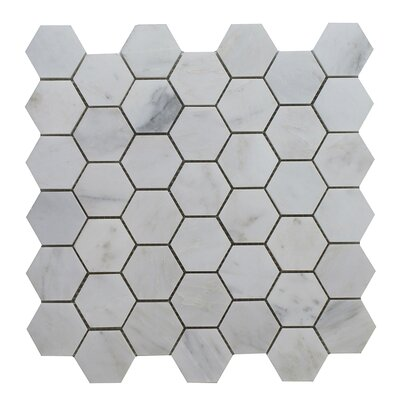 Arabescato Hexagon Polished 12 x 12 Glass Mosaic Tile in Gray