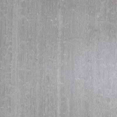 24 x 12 Marble Tile in Polished Gray