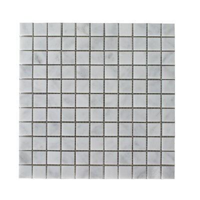 Bianco Carrara Square Honed 12 x 12 Natural Stone Mosaic Tile in White