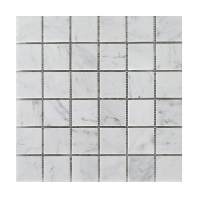 Bianco Carrara Square Honed 12 x 12 Natural Stone Mosaic Tile in Beige