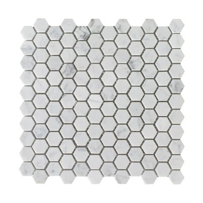 Bianco Carrara Hexagon Honed 12 x 12 Natural Stone Mosaic Tile in White